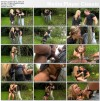 Cheryl S - No Fence Can Hold Back Fully Clothed Fuck Love (14.08.2014) 1080p